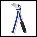 Embroidered Jujitsu White Rank Belt Blue Stripe E4944S-BLU