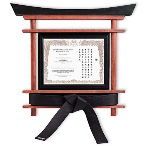 Martial Arts Belt Display 5201