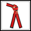 Embroidered Master Red Belt Black and Gold Border - Brushed Cotton with Satin E491RBG