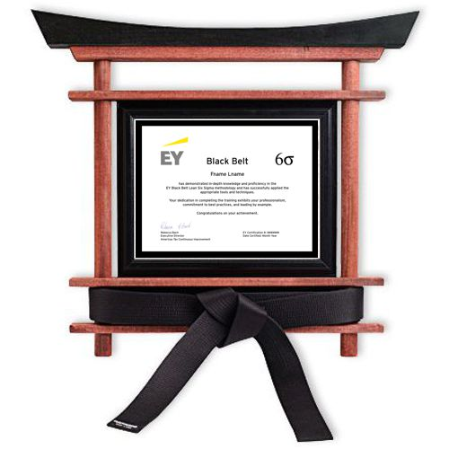 Six Sigma Certificate and Black Belt Display for Karate Belt